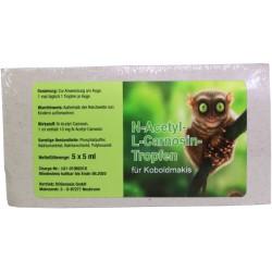 N – Acetyl – L-Carnosin – Tropfen für Koboldmakis