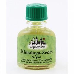 77 Zedernholz-Himalaya