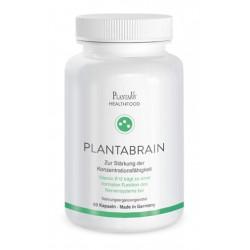PlantaBrain Kapseln