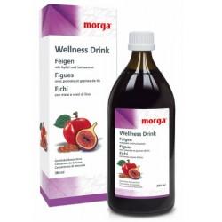 MD4 - Feigen Wellness-Drink  380 ml