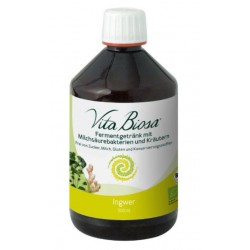 Vita Biosa Ingwer 5dl