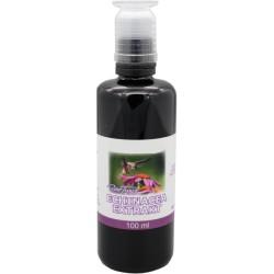 Echinacea Extrakt - 100 ml