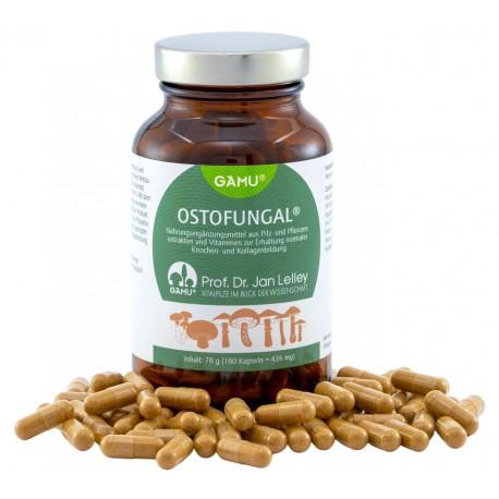 Ostofungal Bio Vitalpilz, 180 Kapseln